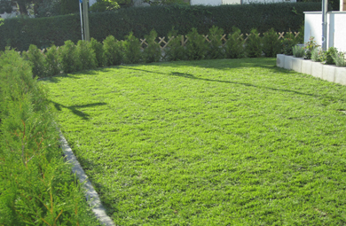 haziraj hof gartenstaltung landschaftsbau gartenbau